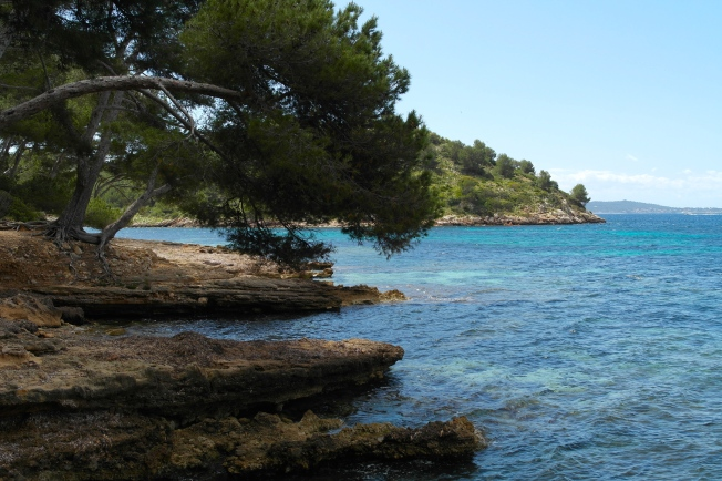 Wonderful Mallorca!