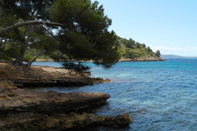 Wonderful Mallorca!